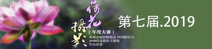 2019荷花BOB体育娱乐平台赛